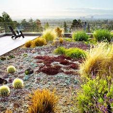 покривни градини