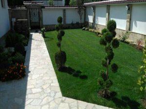 Озеленяване на двор, с. Доброславци [18]