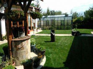 Озеленяване на двор, с. Доброславци [17]