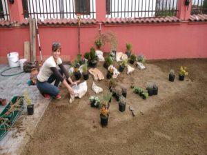 Озеленяване на двор, кв. Модерно предградие [24]