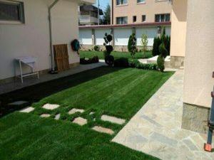 Озеленяване на двор, с. Доброславци [19]