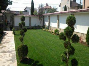 Озеленяване на двор, с. Доброславци [20]