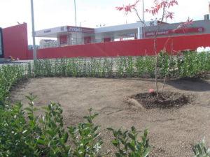 Озеленяване заведение KFC Люлин [37]
