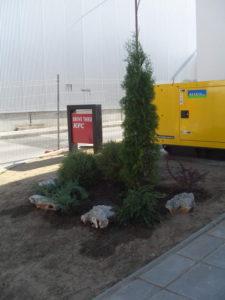 Озеленяване заведение KFC Люлин [34]