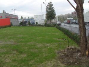Озеленяване заведение KFC Люлин [29]