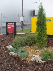 Озеленяване заведение KFC Люлин [25]