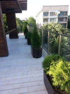 Изграждане на поливна система и озеленяване на тераса, кв. Лозенец [11]