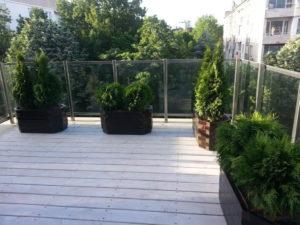 Изграждане на поливна система и озеленяване на тераса, кв. Лозенец [10]