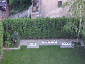 Изграждане на поливна система и озеленяване на тераса, кв. Лозенец [2]