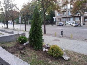 """Озеленяване и поливна система на УМБАЛ """"Александровска"""" [17]"""