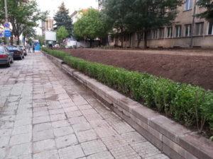 """Озеленяване и поливна система на УМБАЛ """"Александровска"""" [16]"""