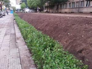 """Озеленяване и поливна система на УМБАЛ """"Александровска"""" [15]"""