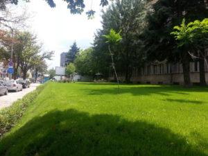 """Озеленяване и поливна система на УМБАЛ """"Александровска"""" [9]"""
