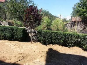 Озеленяване и поливна система – кв. Бояна [21]