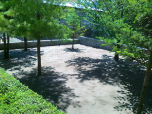 Затревяване на двор – Пловдивска област [1]