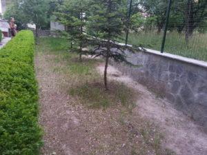Затревяване на двор – Пловдивска област [13]