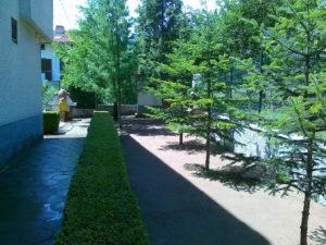 Затревяване на двор – Пловдивска област [5]