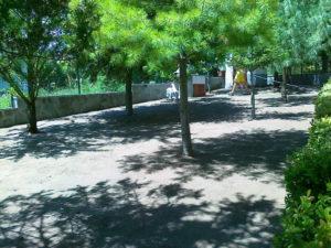 Затревяване на двор – Пловдивска област [3]